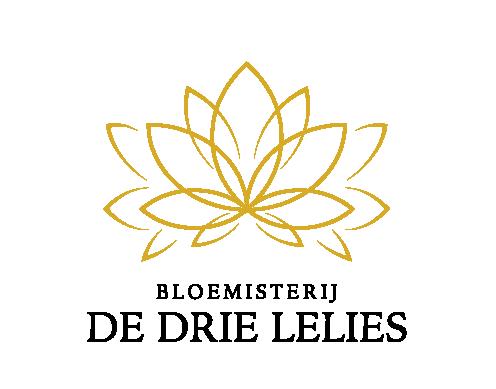 Bloemen, planten en accessoires in Puttershoek